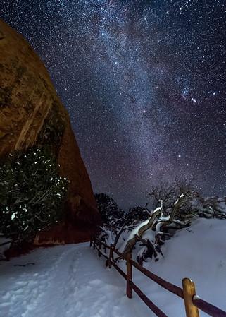 The Still of Night