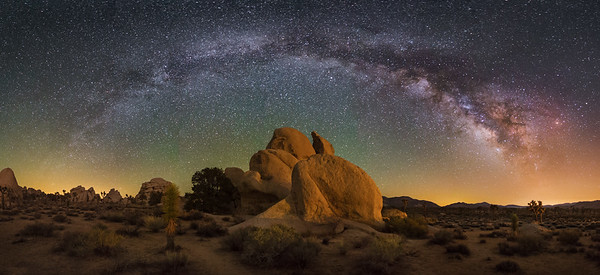 Joshua Tree Panorama at Night 2