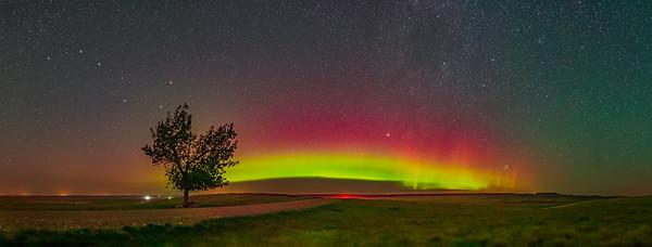 Aurora Panorama from Grasslands (Aug 26, 2019)