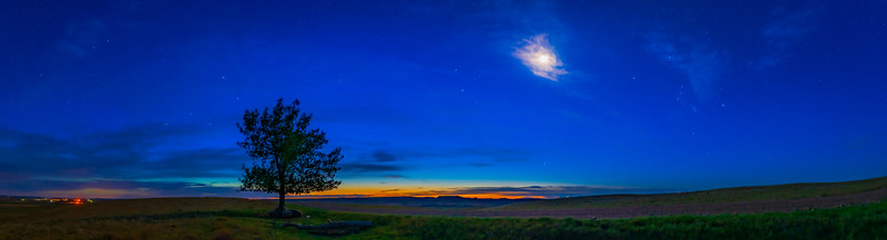 Orion in the Dawn at Two Trees, Grasslands National Park