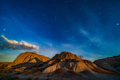 Moonrise Light at Dinosaur Park - North