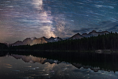Star Trails over Lake Herbert