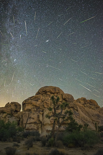 Perseid meteor shower 2016, Joshua Tree National Park