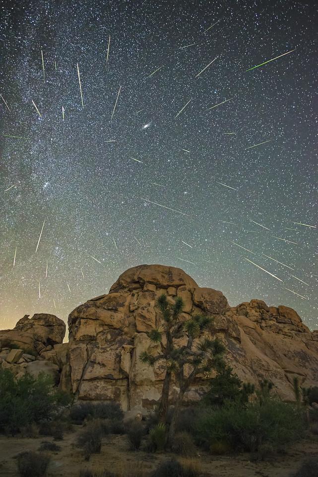 Perseid meteor shower 2016, Joshua Tree National Park
