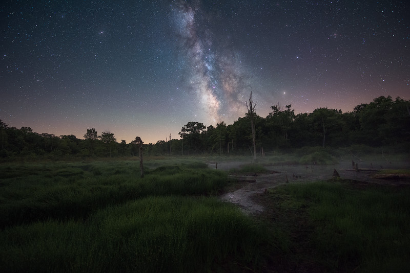 The Milky Way galaxy rises into the night sky at a remote marsh tucked within the Allegheny National Forest, Pennsylvania.