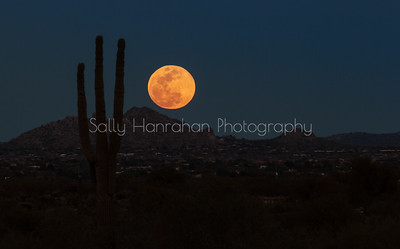 Arizona Moonrise