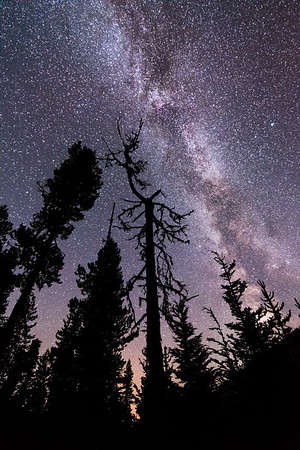 Milky Way Silhouette.