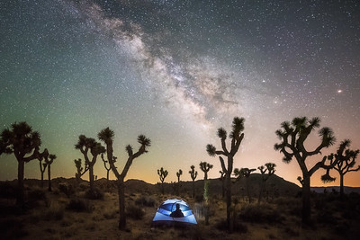 Joshua tree camping under the milky way