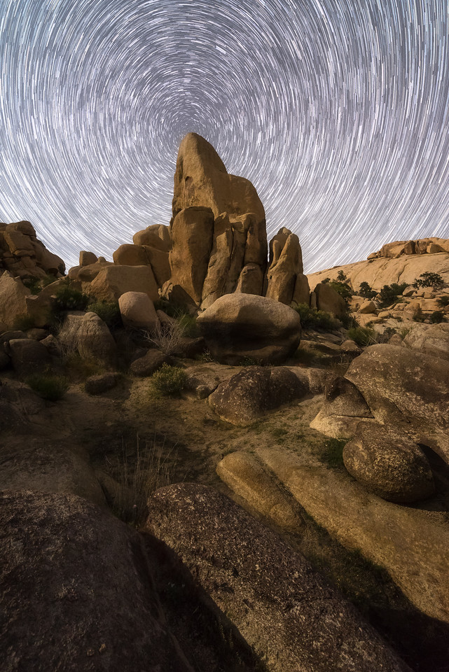 Joshua Tree moonlit startrails