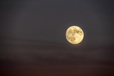 Super Moon rising over Willow Glenn