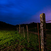 Fenceline in the Night