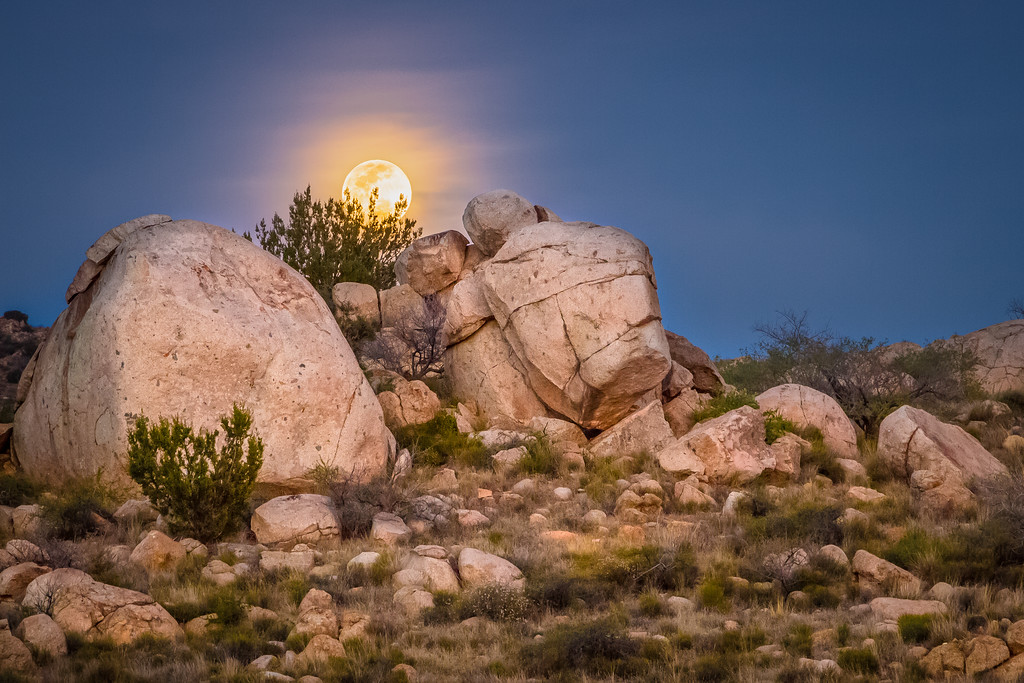 Skull Valley Moonrise