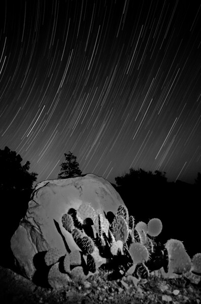 Prickly Pear Startrails Blend Final.jpg