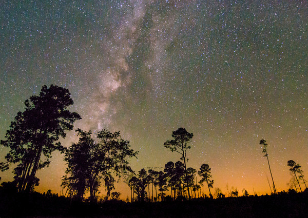 Milkyway Over Stephen C Foster State Park