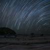 Star trails over Masai Mara