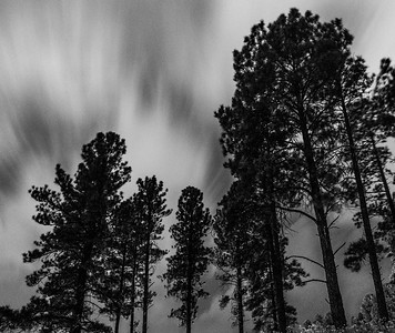 Storm Blowing In, Flagstaff