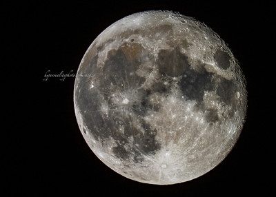 Sturgeon Moon 2020