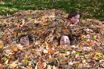 Nikki & Calvin - Fall Leaf Pile - 2017