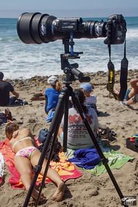 Nikon D4 + 600mm F4 Nikkor lens with Video Camera for Shooting Stills & Video @ Same Time!