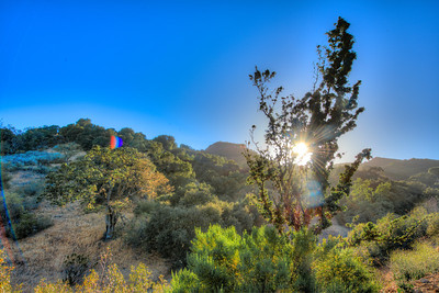 Nikon D800E HDR Malibu Canyons Landscape Photography with 14-24 mm Wide Angle f/2.8 Lens