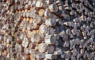 Two Tone Logs