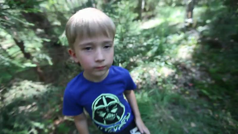 Максик и грибы :)
