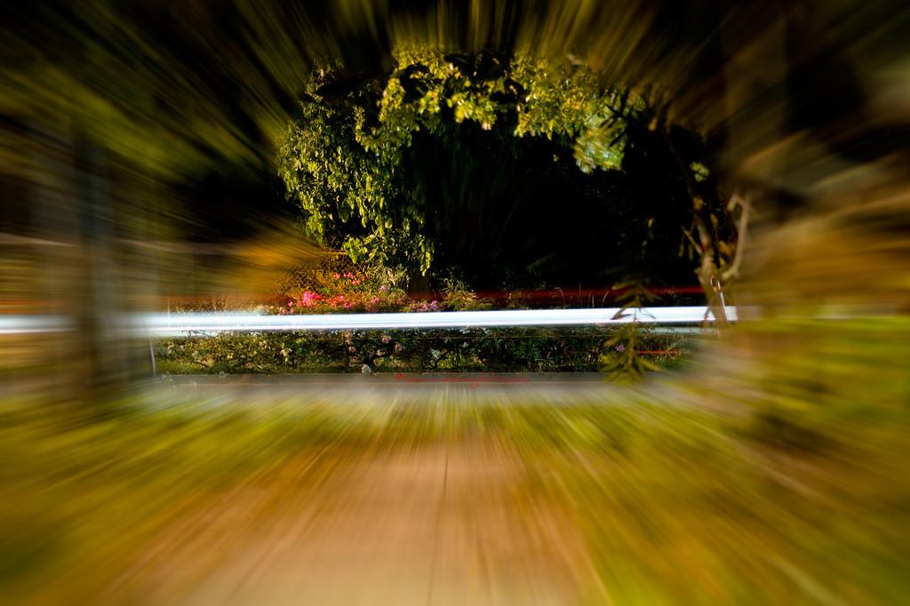 The Speed of Light!