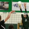 Niwot vs Longmont Volleyball