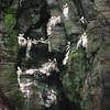005 Vestmanna Bird Cliffs, Streymoy Island, Faroe Islands