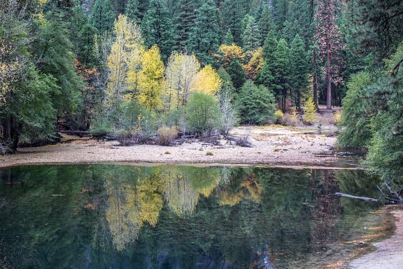 Autumn colors from Stoneman Bridge.  Yosemite Valley.  Yosemite National Park.  California.