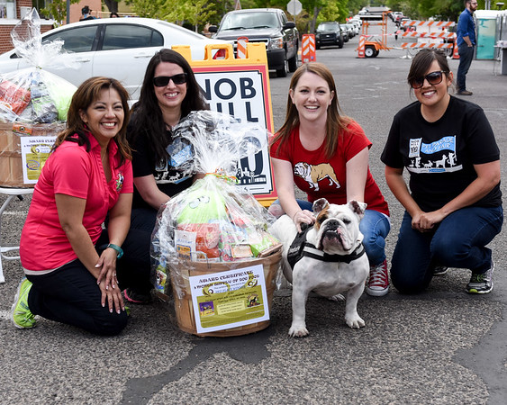 Nob Hill is 100 Unleashed | Pet Parade and Fair
