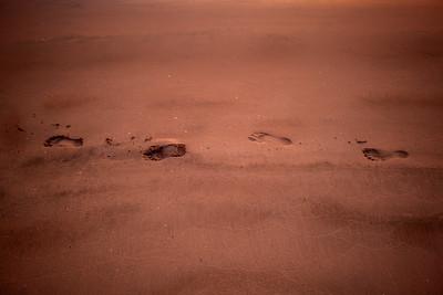 Ichi-go Ichi-e Footprints