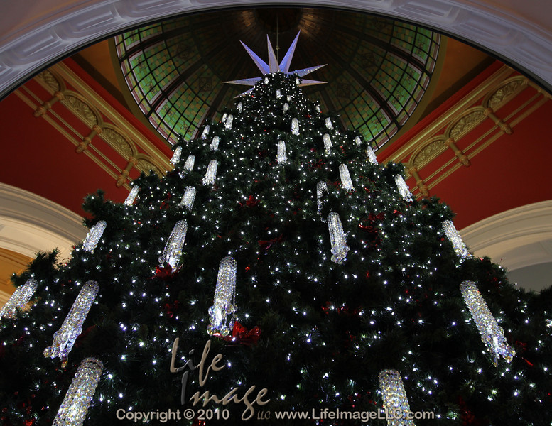 Three story tree in the Queen Victoria Building, Sydney, Australia