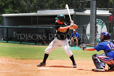 Nolan's baseball 2010