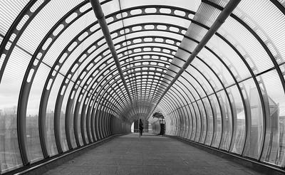 Poplar Tunnel