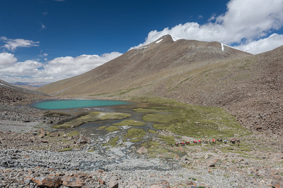Ladakh Nomads, Lakes + High Passes Trek 2016