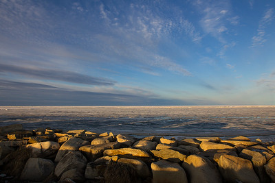 Bering Sea, Nome, Alaska (June, 2013)
