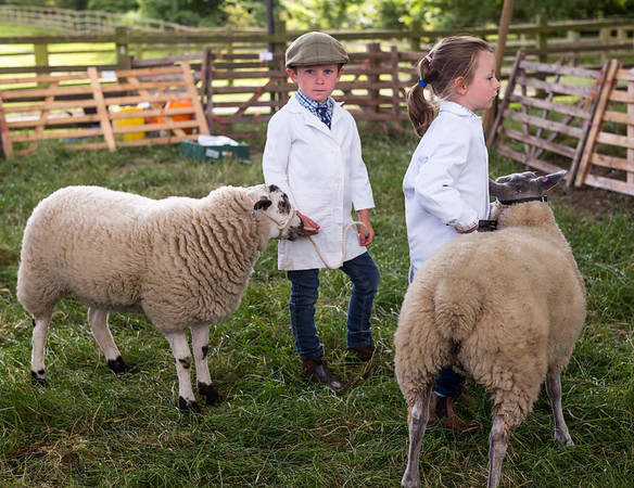 Children with Sheep - Osmotherley North Yorkshire UK 2016