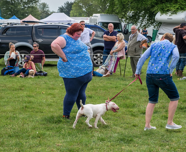 Scampston Game and Country Fair - North Yorkshire UK 2019
