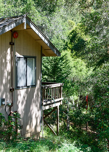 20150412-Vajrapani-Cabins-Lower Deck-Butterfly-9746