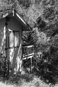 20150412-Vajrapani-Cabins-Lower Deck-Butterfly-9745