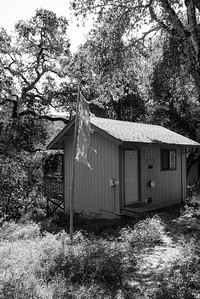 20150412-Vajrapani-Cabins-Lower Deck-Butterfly-9755