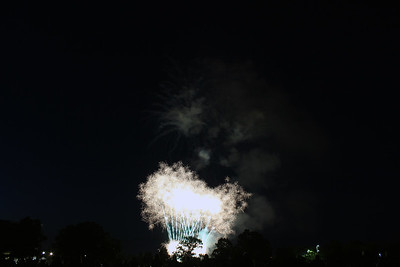 2014 Champaign Fireworks #2