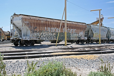 UP78954_Overton_CA_2008_MelRogers (2)