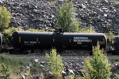 TILX193892_East_Glacier_MT_2009_MelRogers (9)