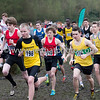 Newham & Essex Beagles Athletics Club : 2 galleries with 547 photos
