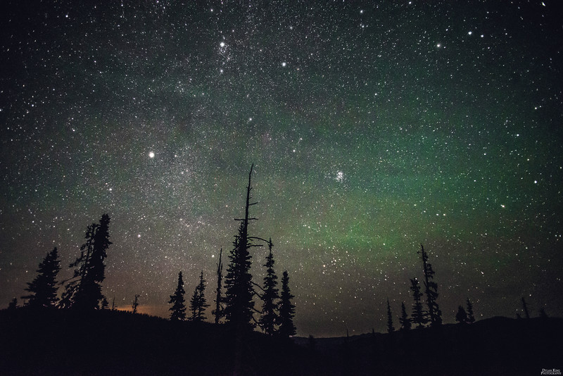 Night Sky over Manning Park, BC