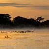 Sunrise; Pantanal; 2019; Sunrise Pantanal; Pantanal rivers; Brazil