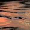 Zambië;  Zambezi; Water reflections; Zambia