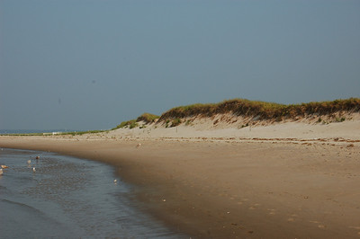 Crane Beach Ipswich MA